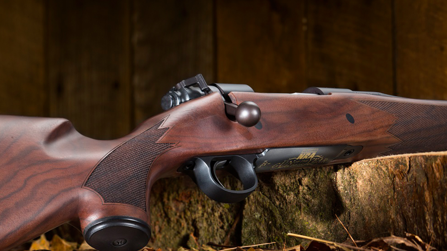Feast Your Eyes on the Gun of the Year