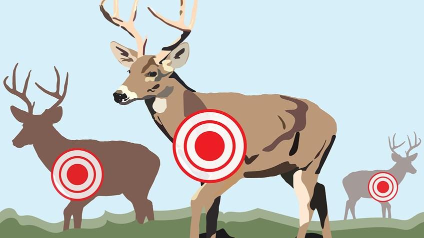 Prep for Hunting Season at the Gun Range