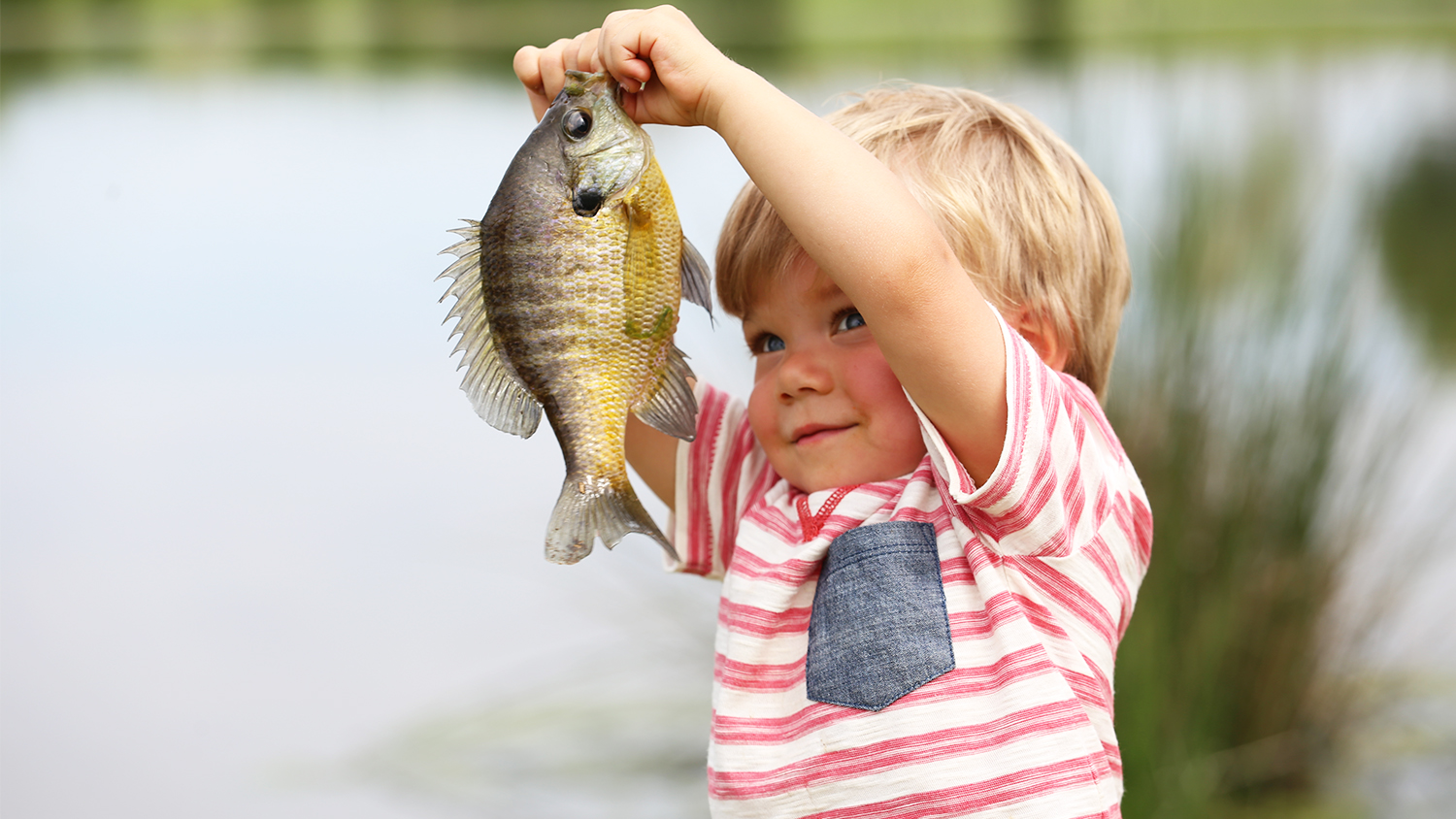 How Are You Celebrating National Hunting and Fishing Day?