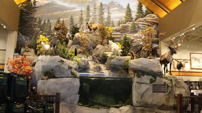 Cabela's, Bringing The Outdoors To You