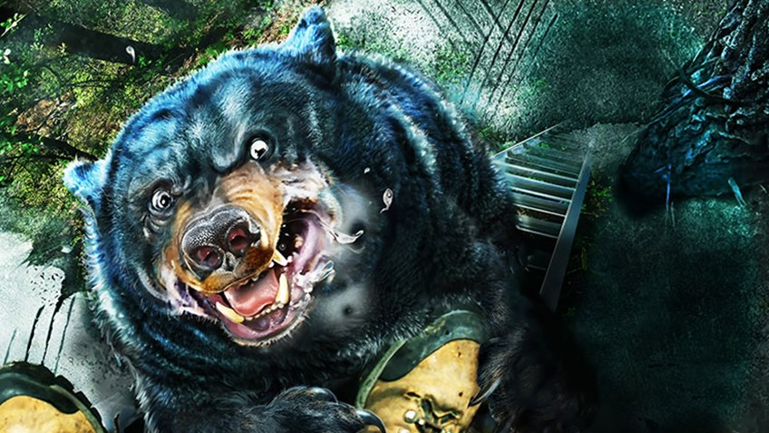 Bears: Why Sometimes It's Best to Just Get Out of the Way