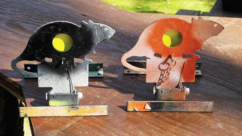 Steel Squirrels & Flying Pellets: The Magic of Air Rifle Field Target