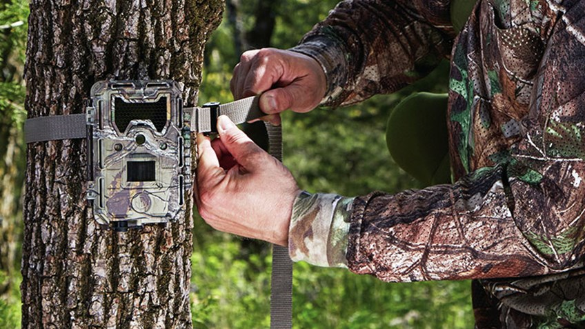 Trail Cam Dos and Don'ts