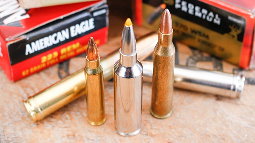 Top 5 Overrated Rifle Cartridges