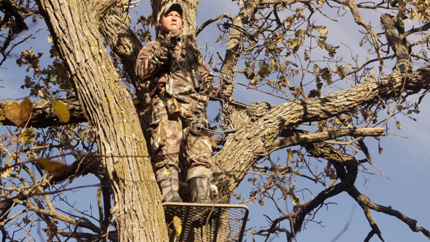 Know-How: Make Your Treestand Disappear