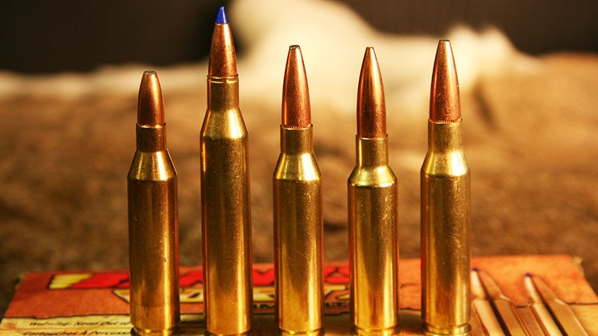 Top 5 Calibers for a Youth Deer Rifle
