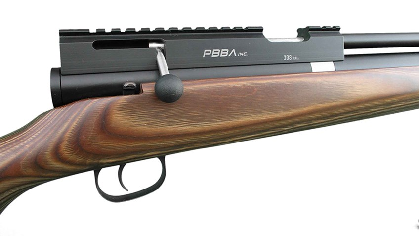 Airguns Continue to Make Strides in Hunting Circles
