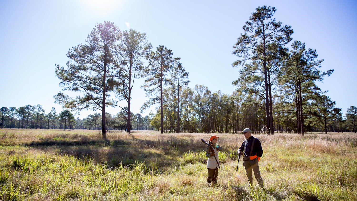 Quail Hunting with Kids: 7 Tips from a Top SC Hunting Plantation